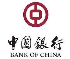 Bank of China - Success Story 1